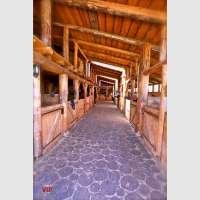 Cheval Alsace, centre de loisirs équestres à Belmont