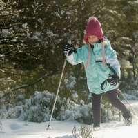 Course de ski de fond au Champ du Feu